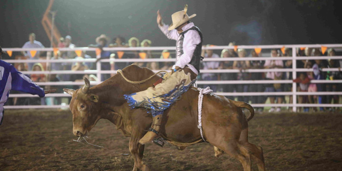 Rodeo Events 2020.Kununurra Campdraft Rodeo Ozevents Online
